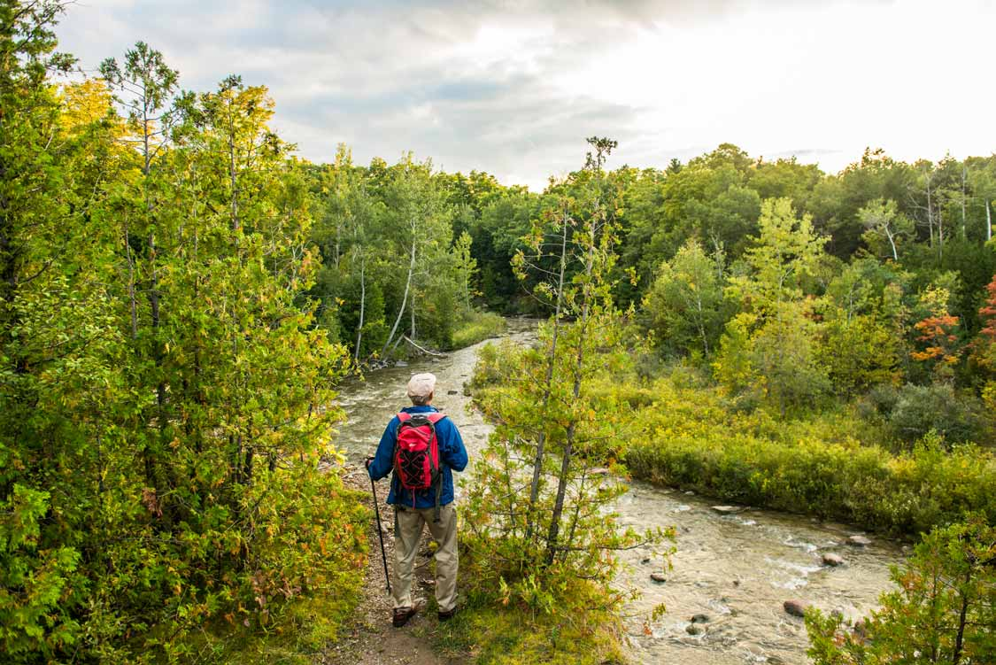 Toronto Rouge River Hiking Trail In Ontario