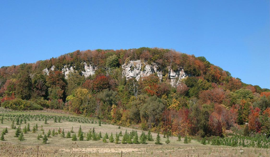 Fall Colour in Rattlesnake Point Ontario