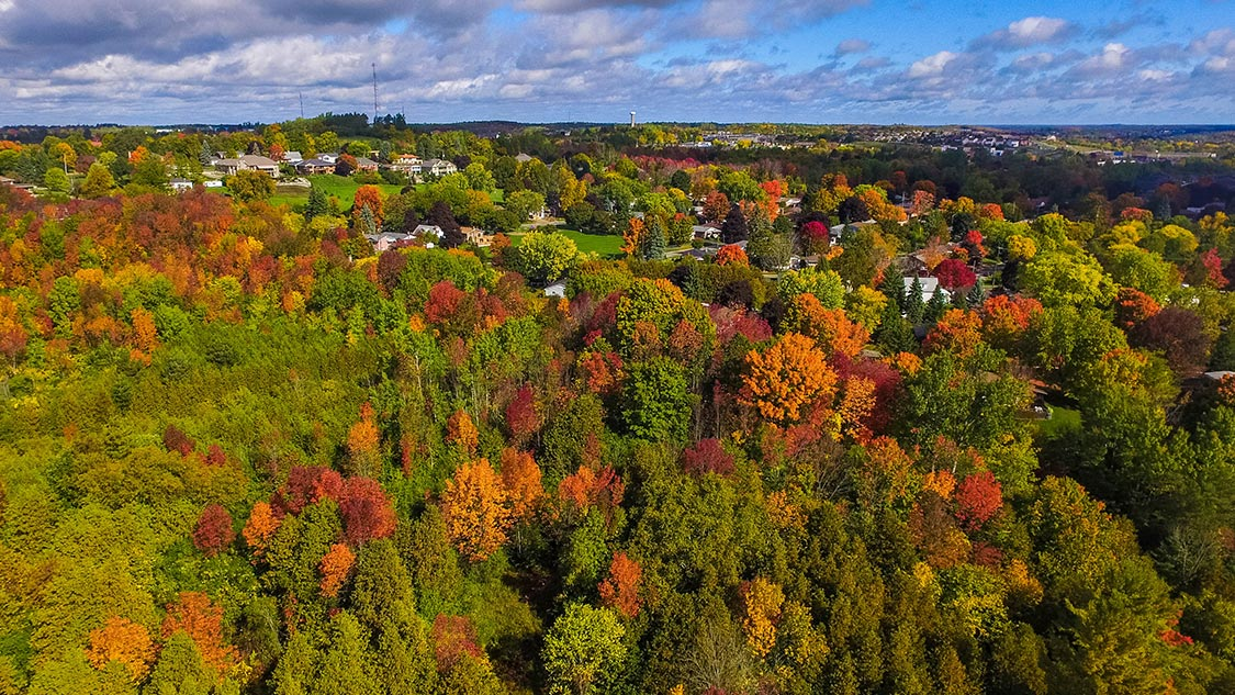 Fall Colours Near Toronto