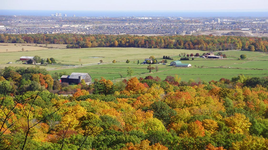 Views from Mount Nemo-Conservation Area in the Fall