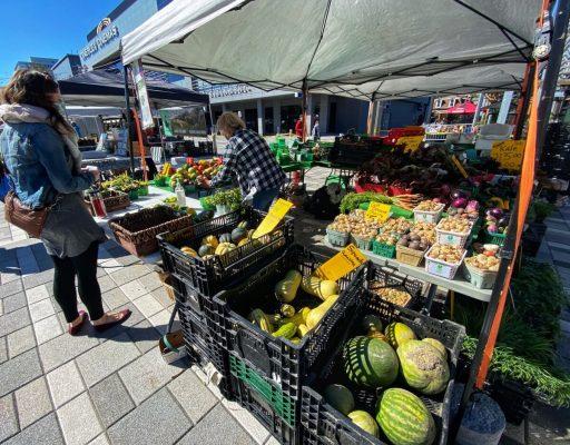 Ottawa Farmers Market at Lansdowne Park