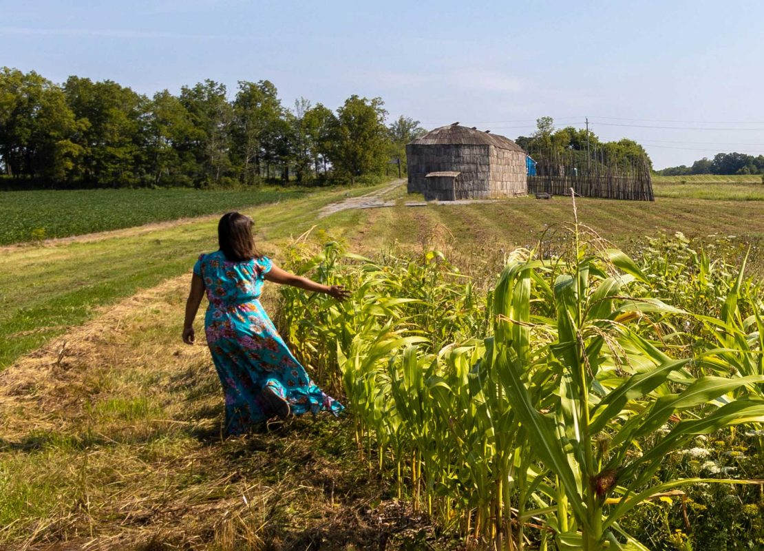 Corn Growing in Front of OSTTC Longhouse