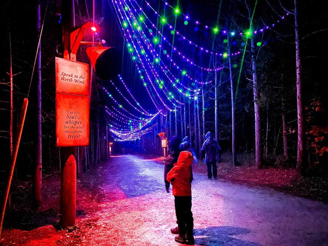 Agora Ontario Light Show at Blue Mountain