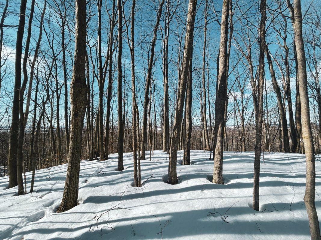 Barrie, Ontario in winter