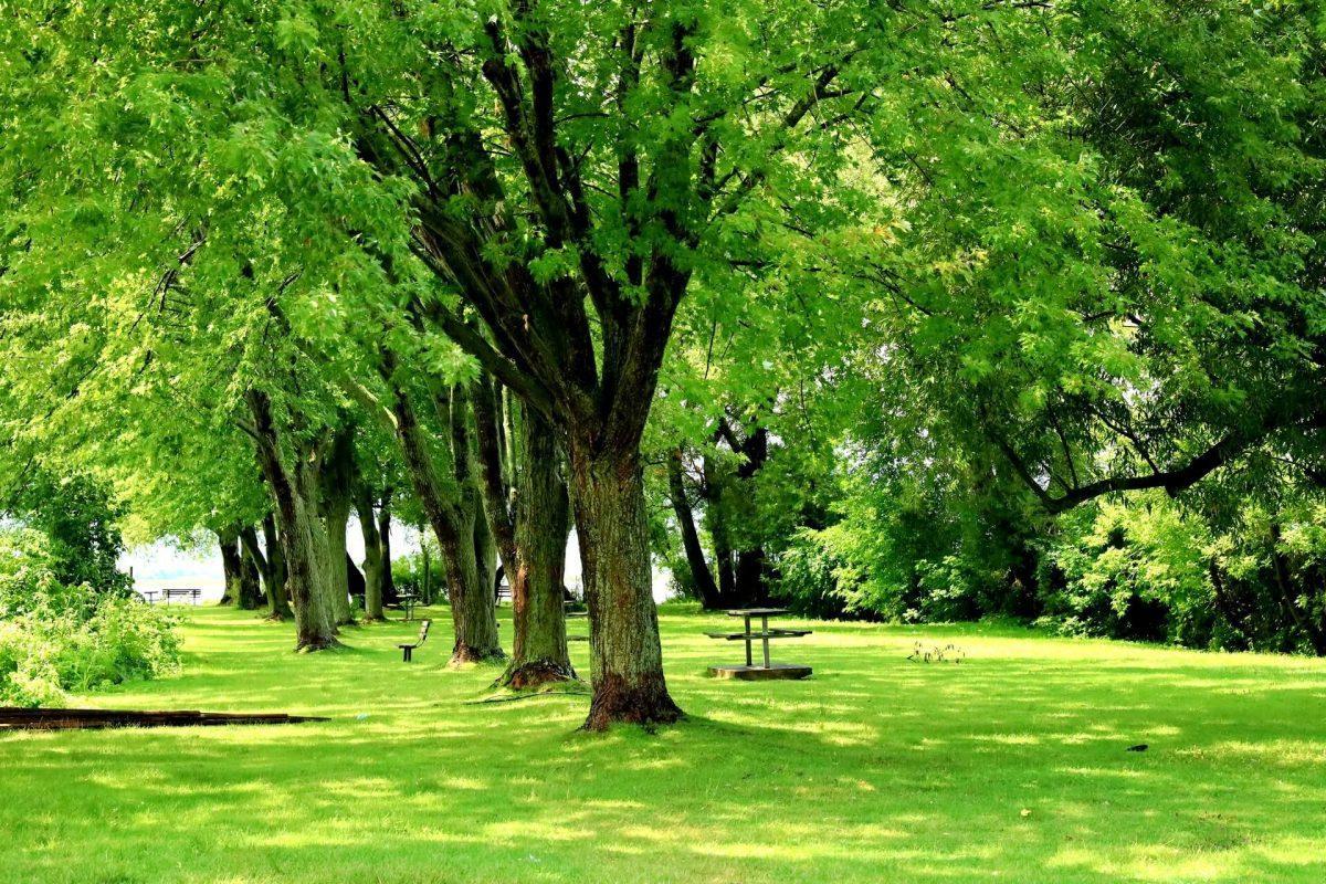 Centennial Park in Barrie, Ontario