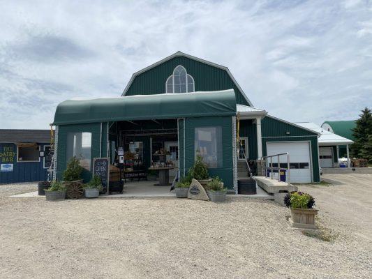 dairy-farm-tour