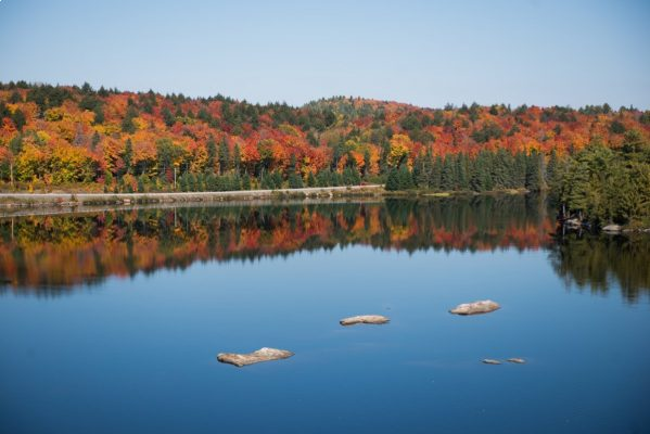 The fall colours at Algonquin Provincial Park with Highway 60 in the foreground